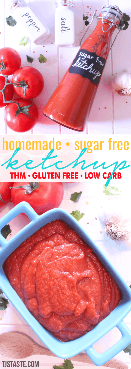 Homemade, Low Carb, Sugar Free Ketchup THM FP