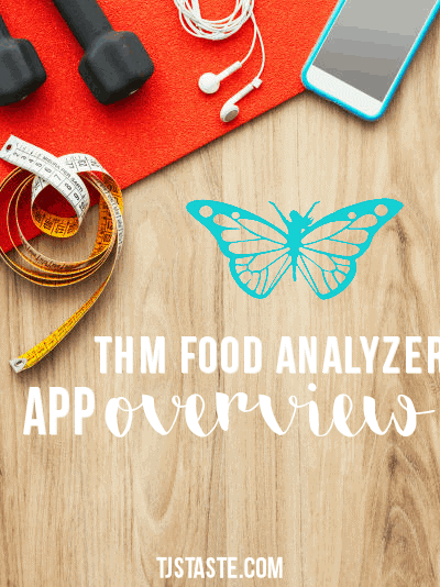 THM Food Analyzer App Overview